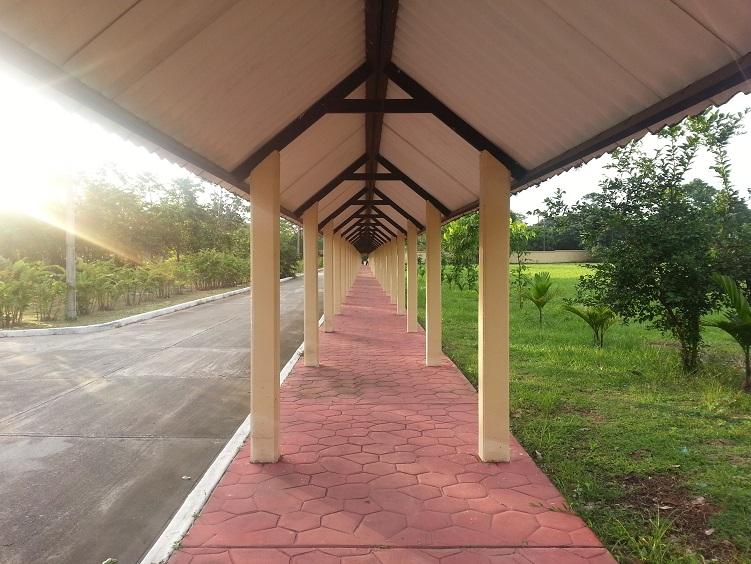 2 3 puentes y senderos ecol gicos vehiculares y for Imagenes de techados